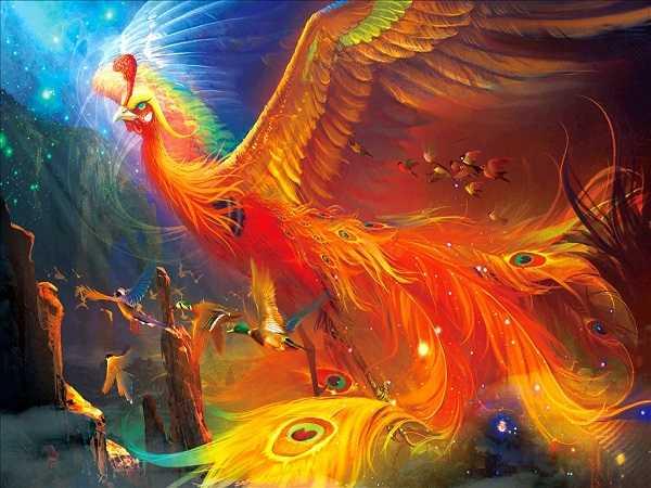 Điềm báo trong giấc mơ thấy chim phượng hoàng