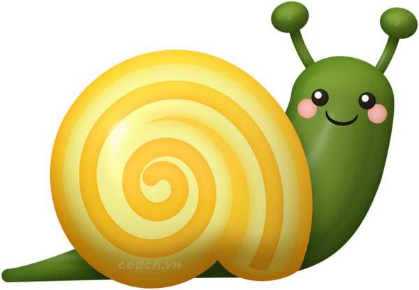 Điềm báo trước khi nằm mơ thấy con ốc sên là gì
