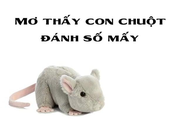Mơ thấy con chuột điềm báo lành hay dữ?