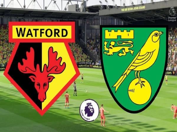 Nhận định trận đấu Watford vs Norwich, 0h00 ngày 21/4