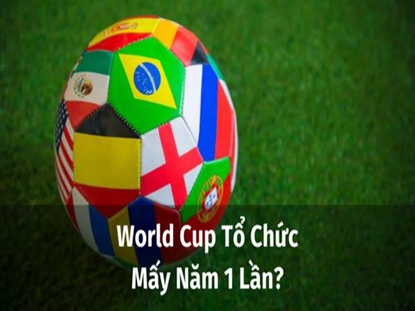 World Cup mấy năm 1 lần? Những thông tin thú vị về World Cup